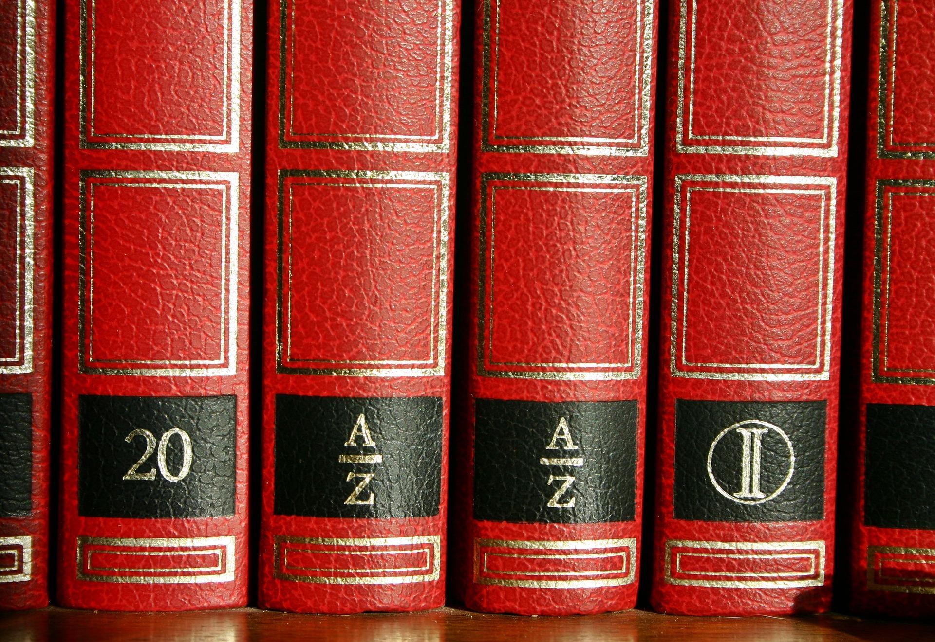 1 Diccionario técnico para actividad comercial o de servicios