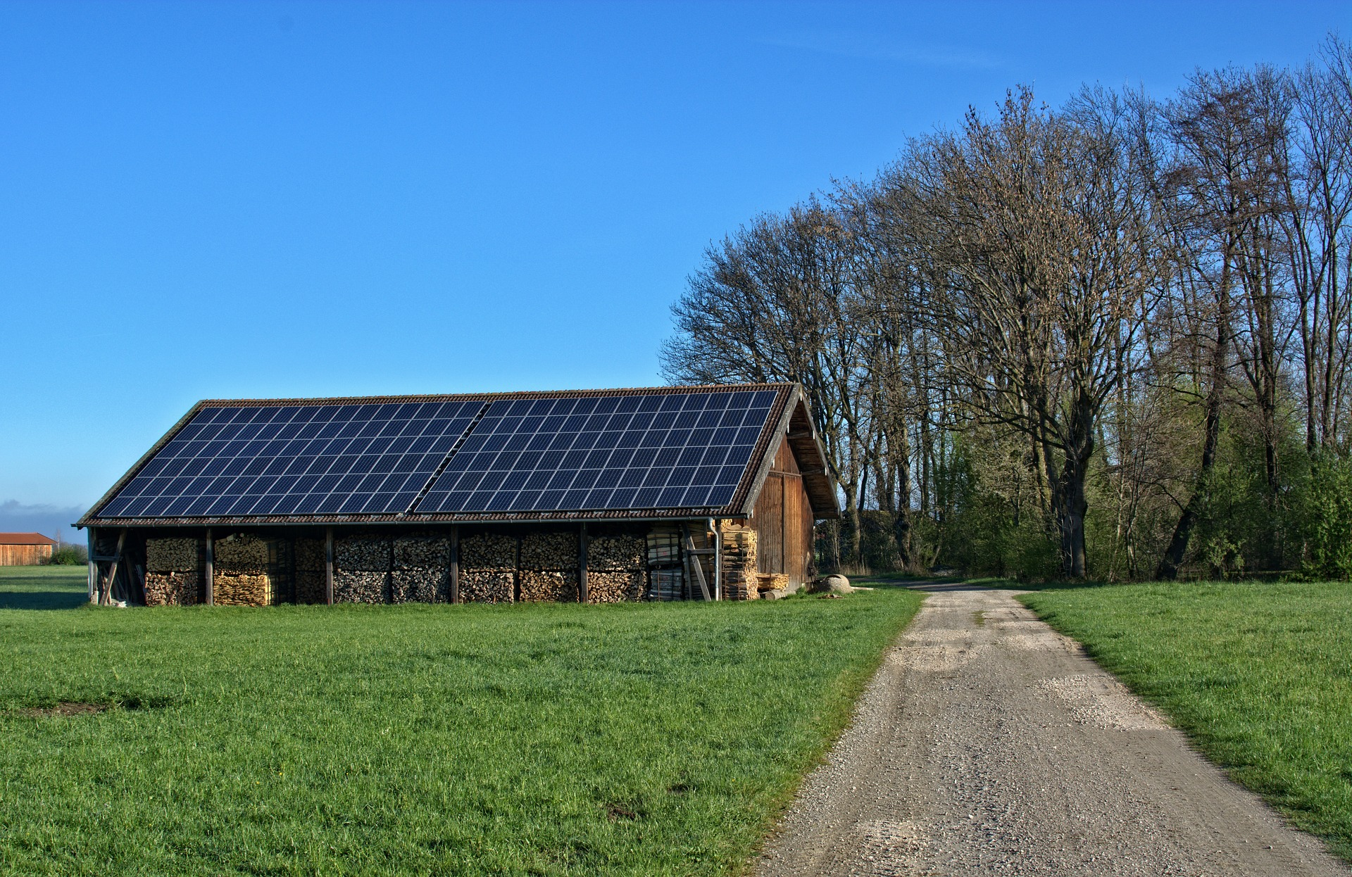 Eficiencia eléctrica: paneles solares en un entorno natural.